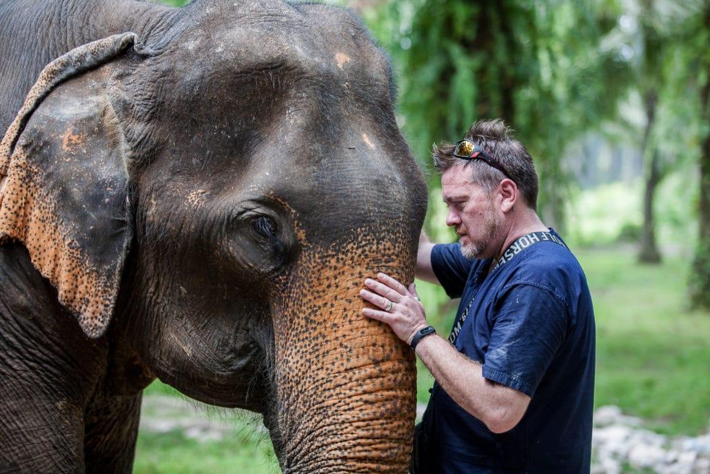 Elephants greeting, Krabi Elephant House Sanctuary