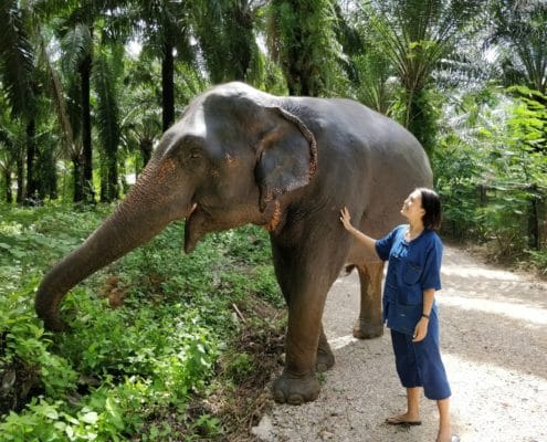 Annie Lau from KL - touching elephant