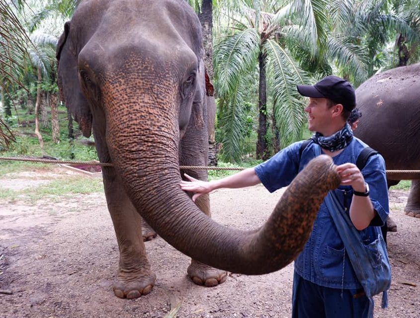 Feed the elephant - Things to Do in Krabi Province - Krabi Elephant House Sanctuary