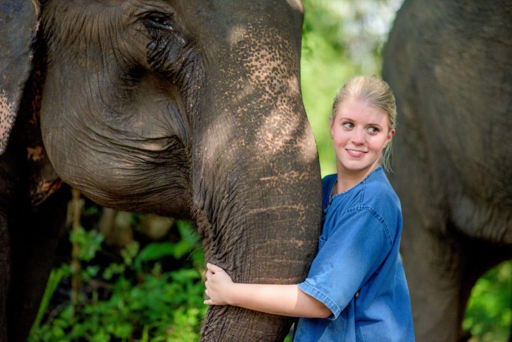 Get close to the gentle giant elephants @Krabi Elephant House Sanctuary