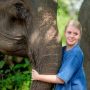 Get close to the gentle giant elephants @Krabi Elephant House Sanctuary