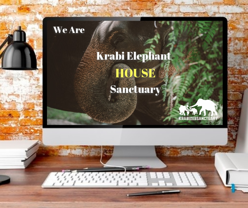 We are Krabi Elephant HOUSE Sanctuary, Krabi, HOUSE, Elephants Love