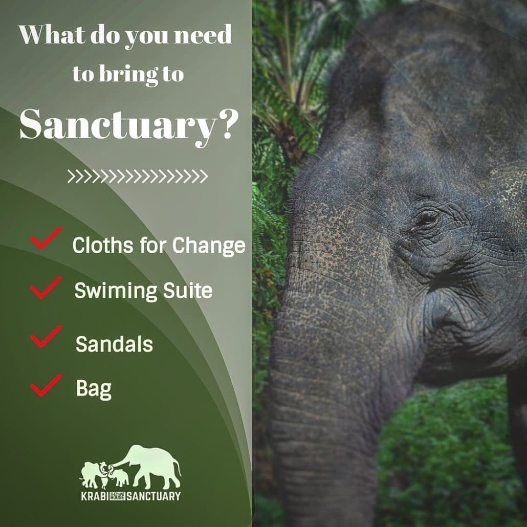 What you need to bring to Sanctuary