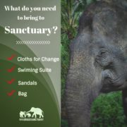 What you need to bring at Sanctuary?