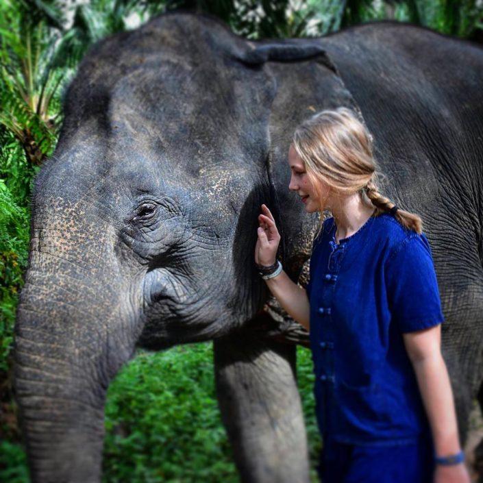 walk with Elephant_Elephant HOUSE Sanctuary